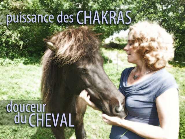 ATELIER PUISSANCE DES CHAKRAS, DOUCEUR DU CHEVAL