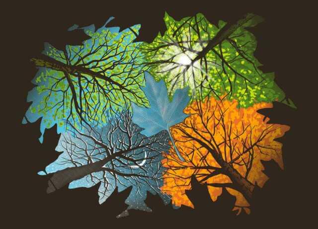 Dansez le jardin au rythme des saisons