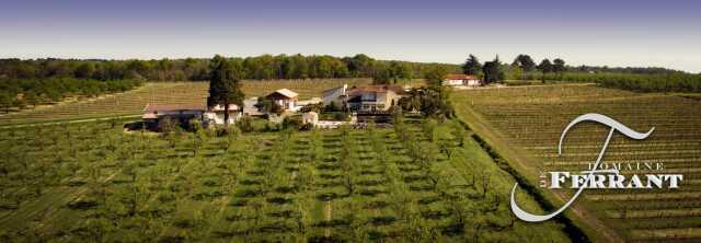 Dîner musical dans les vignes au domaine de Ferrant