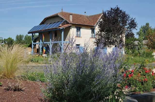Connaître les vertus des plantes sauvages au Jardin de Marinette - Copie