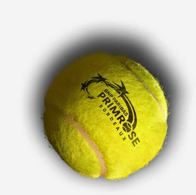 Tournoi international de tennis ATP de Bordeaux BNP Paribas Primrose
