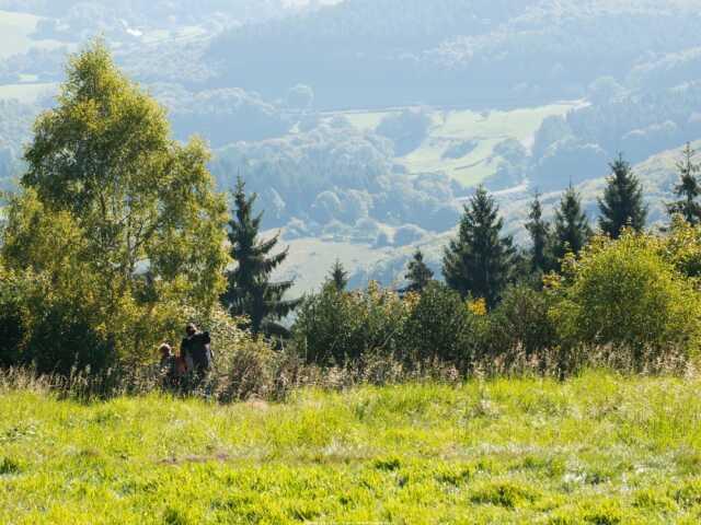 Animation nature : Fragile tourbière aux Sources de l'Yonne