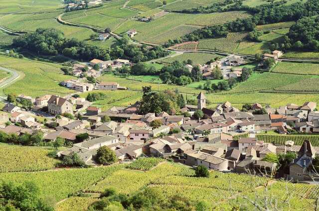 Découverte du village de Solutré-Pouilly
