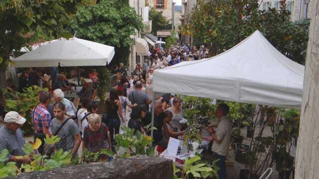 La Figoulade, fête de la figue fraîche