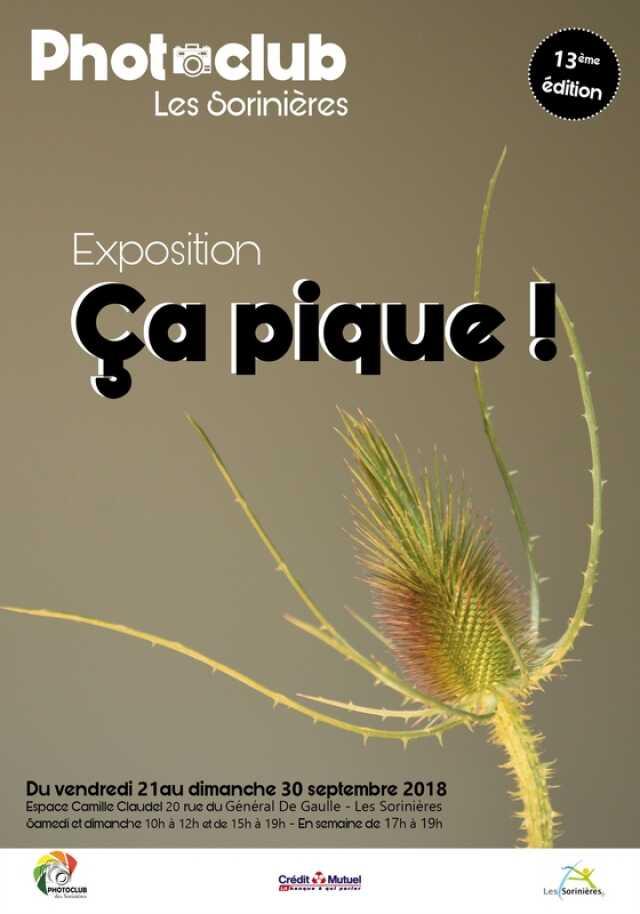 """Ca pique"" par le clubphoto des Sorinières ?u=aHR0cDovL3d3dy5ldGVycml0b2lyZS5mci9pbWcvdG1wL2luZm9sb2NhbGUvaW5mb2xvY2FsZV82MTY3OTgxXzAuanBn"