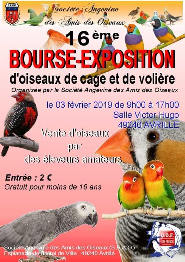 Calendrier Bourse Aux Oiseaux 2022 Maine et Loire   Exposition   Bourse aux oiseaux   Agenda Avrillé