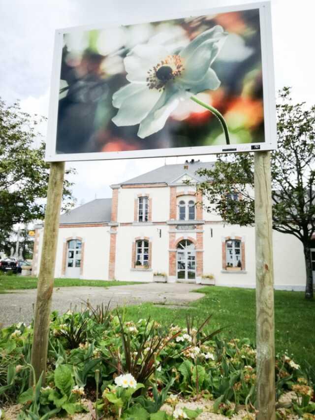Vendée - Exposition - Exposition extérieure, en grand format ...