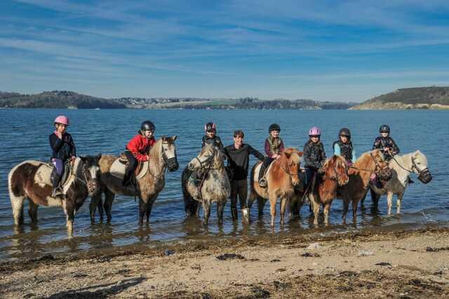 Leçons d'équitation et promenades équestres