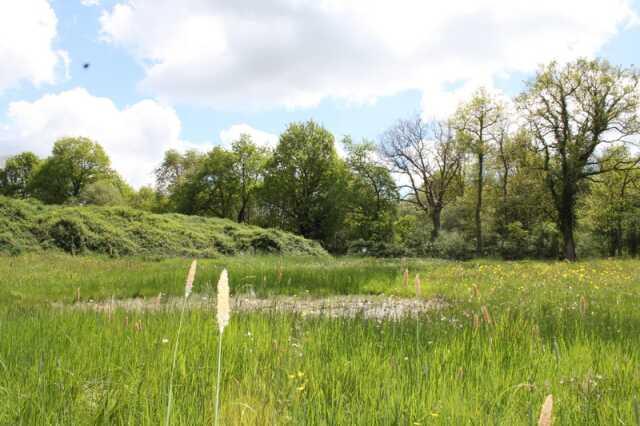 Une réserve naturelle à Saint-Colomban ?