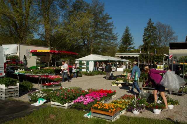 Moselle - Plante - Fleur Visites et circuits - MARCHÉ AUX FLEURS ... 013e7818901