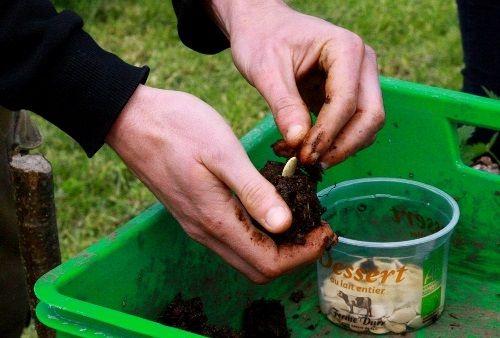 La permaculture au jardin - Journée #2 Jardiner sol-vivant
