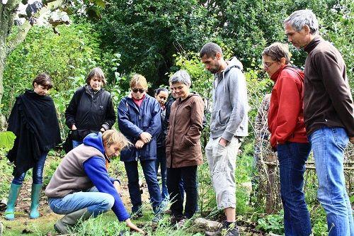 Visite du jardin conçu avec la permaculture