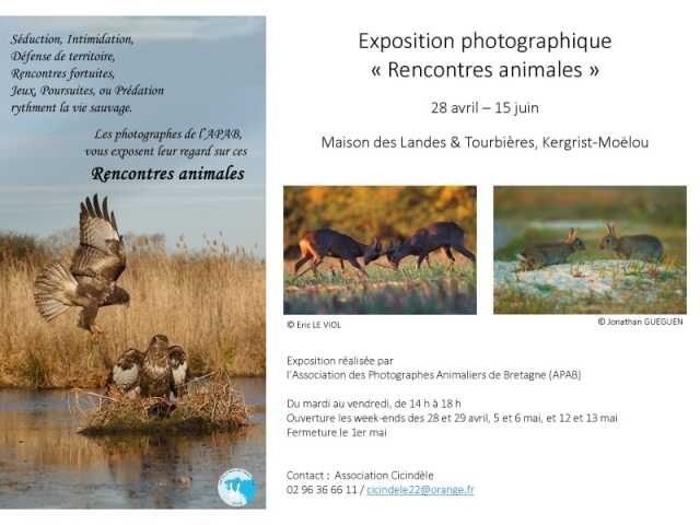 CtesDArmor  Exposition  Exposition Photographie Rencontres