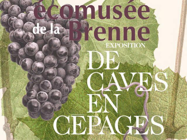 De caves en cépages