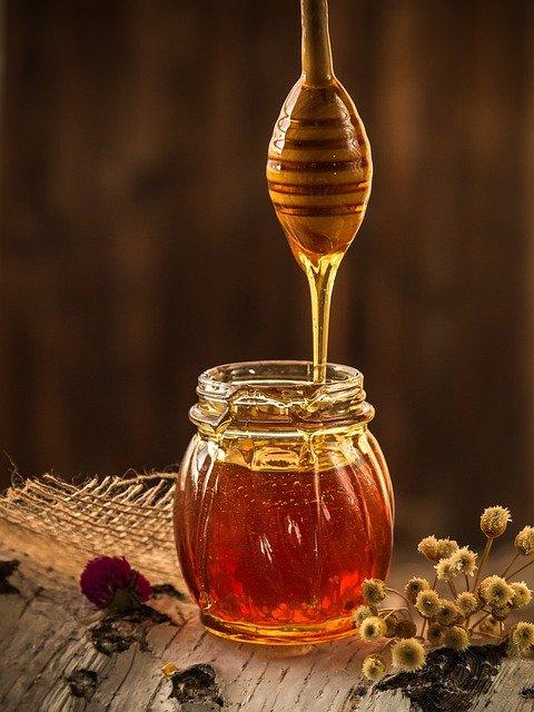 Sortez, c'est l'été ! : Le miel & les abeilles