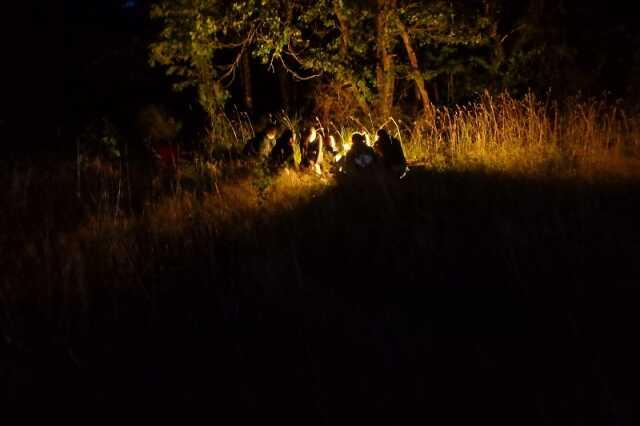 Insectes nocturnes et ciel étoilés